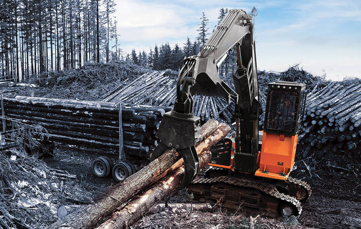 ZX290 on site at logging forestry project